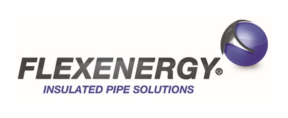 Flexenergy Logo